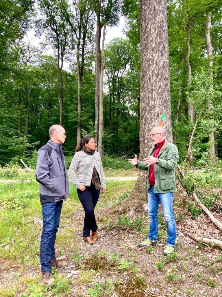 Fédération des Tonneliers de France - Communiqué de presse : la filière méranderie/tonnellerie rencontre la députée Cattelot chargée d'une mission sur la forêt française