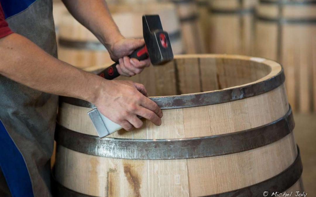 Sud Radio / In vino